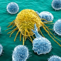 Immunotherapy in Cancer Treatment